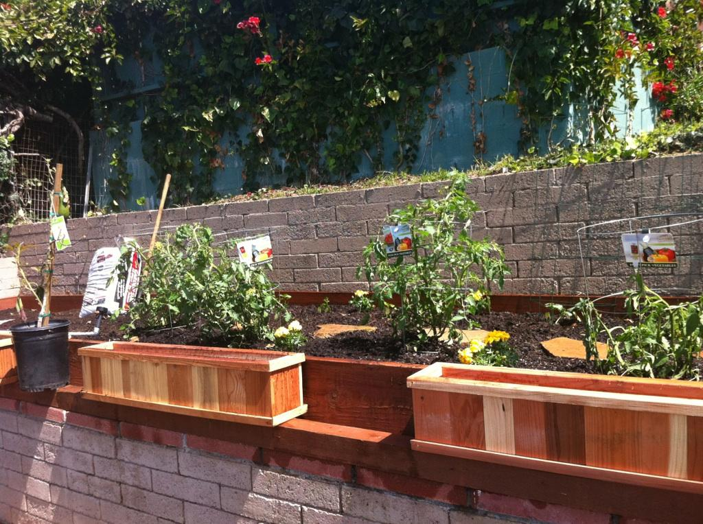 When vision comes to your backyard garden eats for Garden designs with raised beds