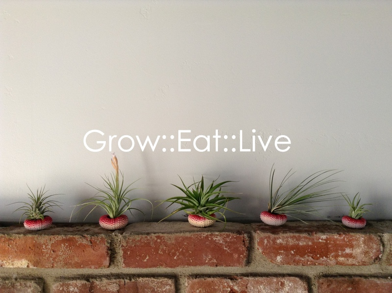 Garden Eats Grow Eat Live