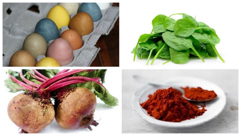 Garden Eats Egg
