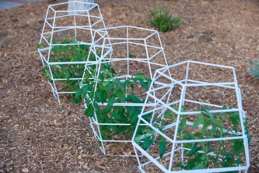 Garden Eats Terra Trellis Tomato Cages