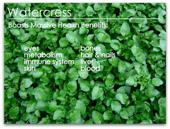 Garden Eats Watercress