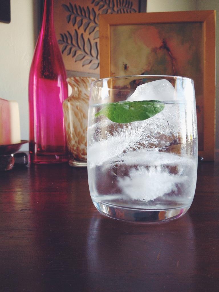 Gin & Coconut Bobrow Garden Eats