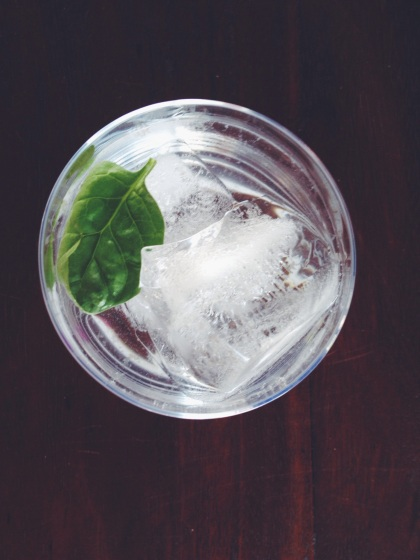 Coconut and Gin With Seltzer Bobrow Garden Eats