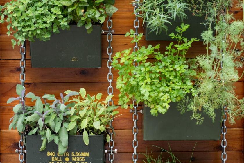 Garden Eats The Horticult Vertical Herb Garden