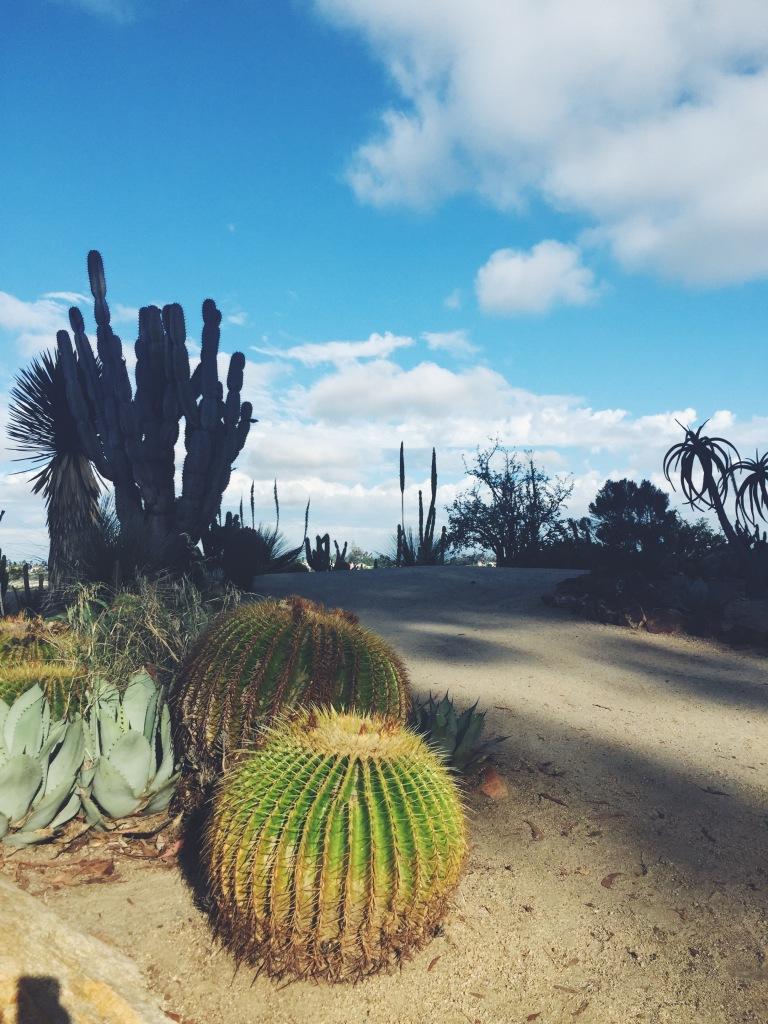 Garden Eats Plant Meditation Balboa Park