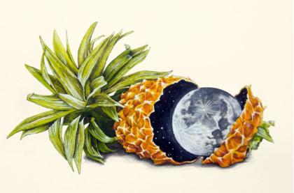 James Ormiston for Poppy & Seed